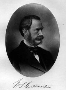 Viljamas Mortonas